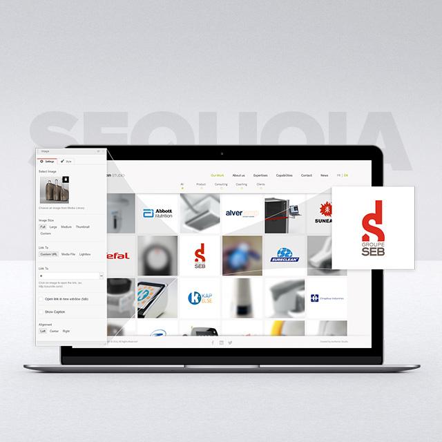 Sequoia Studio - Responsive Portfolio Manager